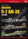 13 - Ilyushin Il-2 AM-38 all models